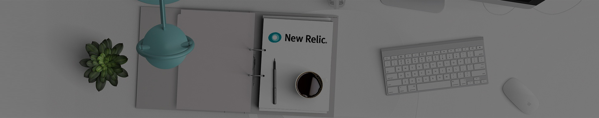 IT demand management tool New Relic